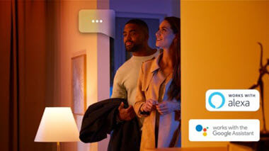 Philips Hue voice command
