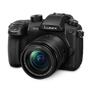 PANASONIC Lumix DMC GH5 12-60mm, F3.5-5.6 ASPH Kit