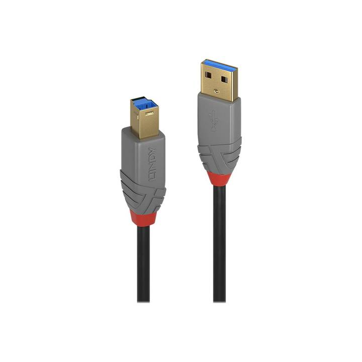 LINDY 5m USB 3.0 Typ A to B Cable Anthra