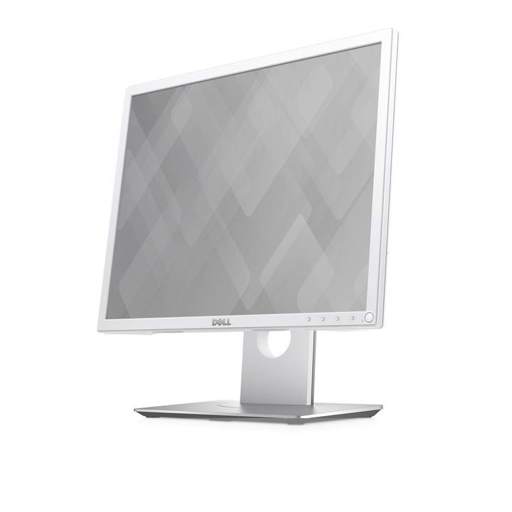 "DELL P1917SWH LED Monitor, 19"" (48 cm), Weiss"