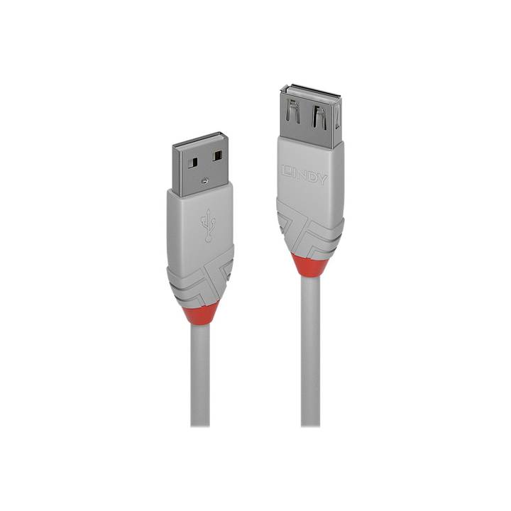 LINDY 1m USB 2.0 Type A Extension Cable
