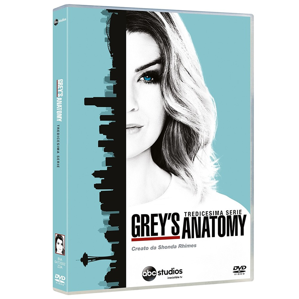 Grey's Anatomy Stagione 13 (Version I)