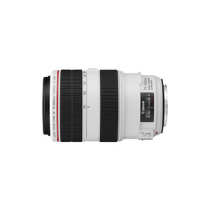 CANON EF 70 - 300 mm f/4.0-5.6 L IS USM